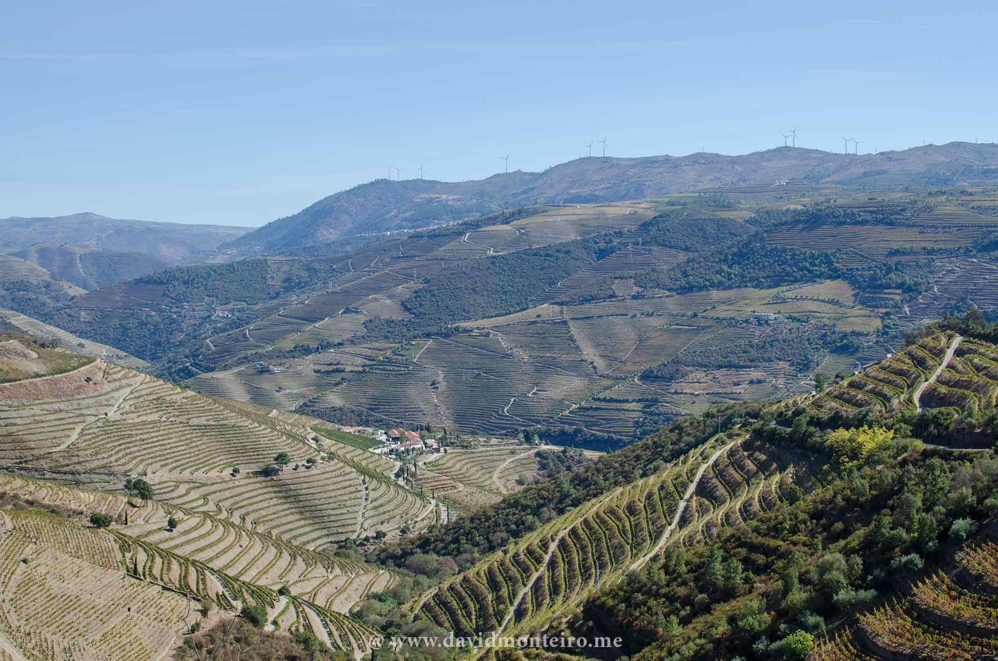 Quinta Nova, Douro Valley, Portugal